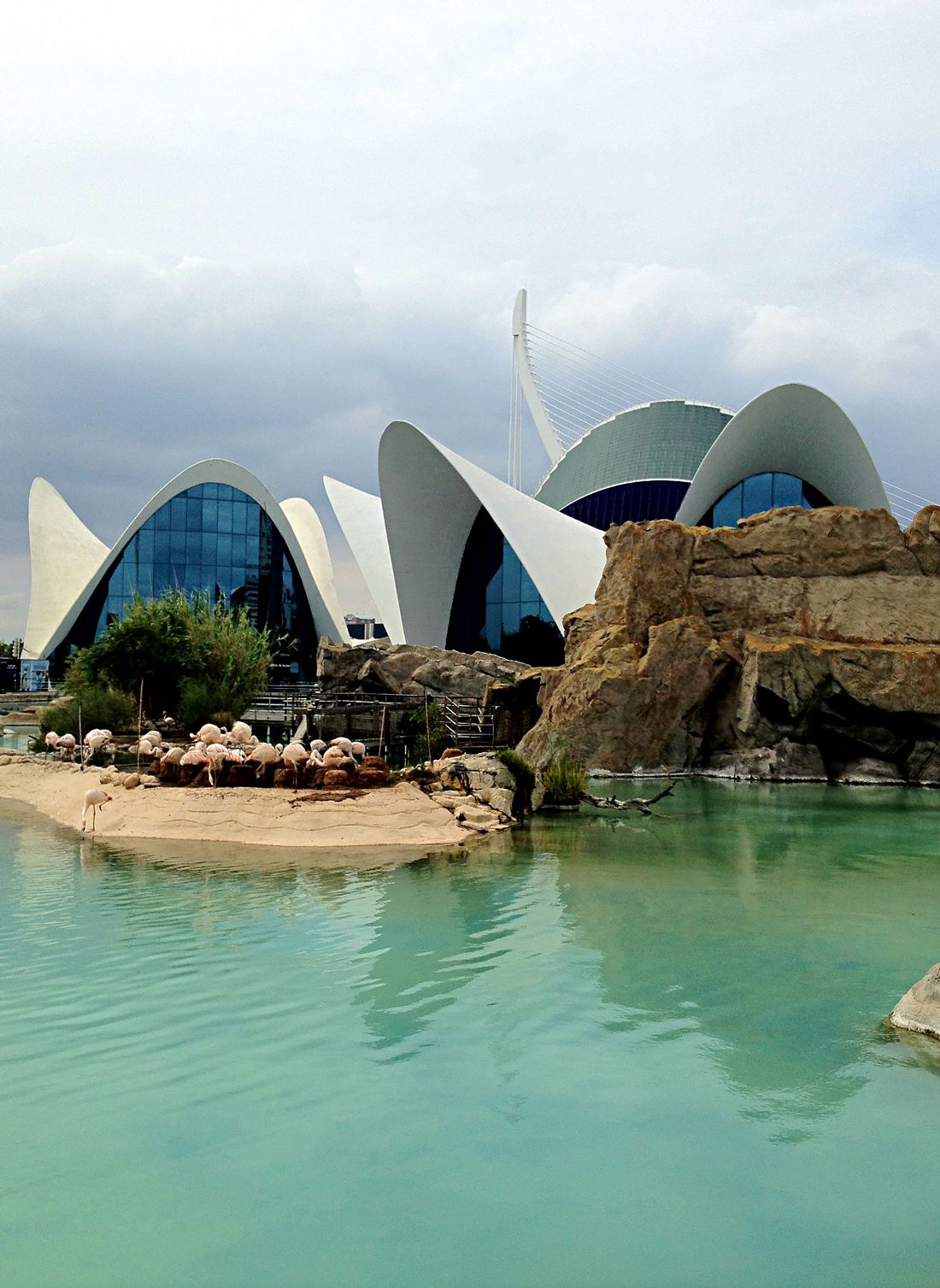 The L'Oceanografic restaurant, The City of Arts and Sciences, Valencia, Spain.