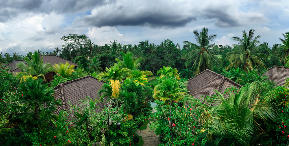 Watching a storm roll in. The view from Yoshoda Kitchen, the hotel restaurant. Dwaraka, the Royal Villas, Ubud, Bali, Indonesia.