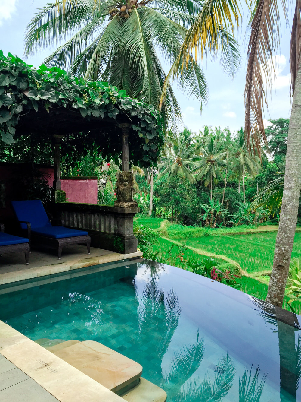 Private pool and seating area, over-looking the rice paddy field. Dwaraka, the Royal Villas, Ubud, Bali, Indonesia.