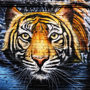 Tiger by JXC, Hawley Mews, Camden Town - Camden Town Street Art, London England - Tily Travels.