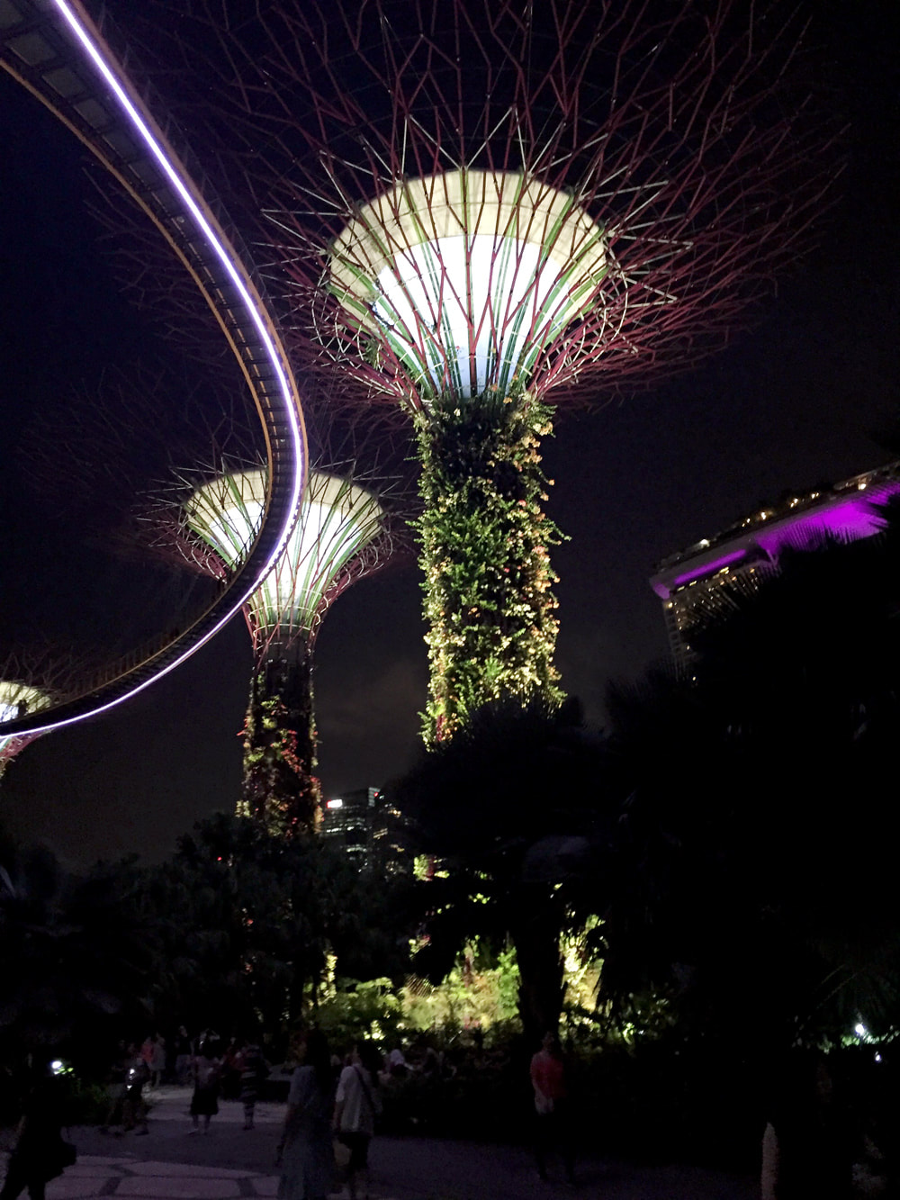 Supertree Grove and the OCBC Skyway at night - Gardens by the Bay, Singapore.