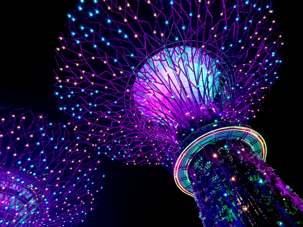 Supertree Grove during the Garden Rhapsody light and sound show - Gardens by the Bay, Singapore.