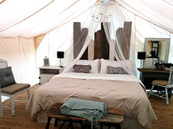 Latest Blog Posts: Questions You Need to Ask Before Glamping in Pennsylvania.