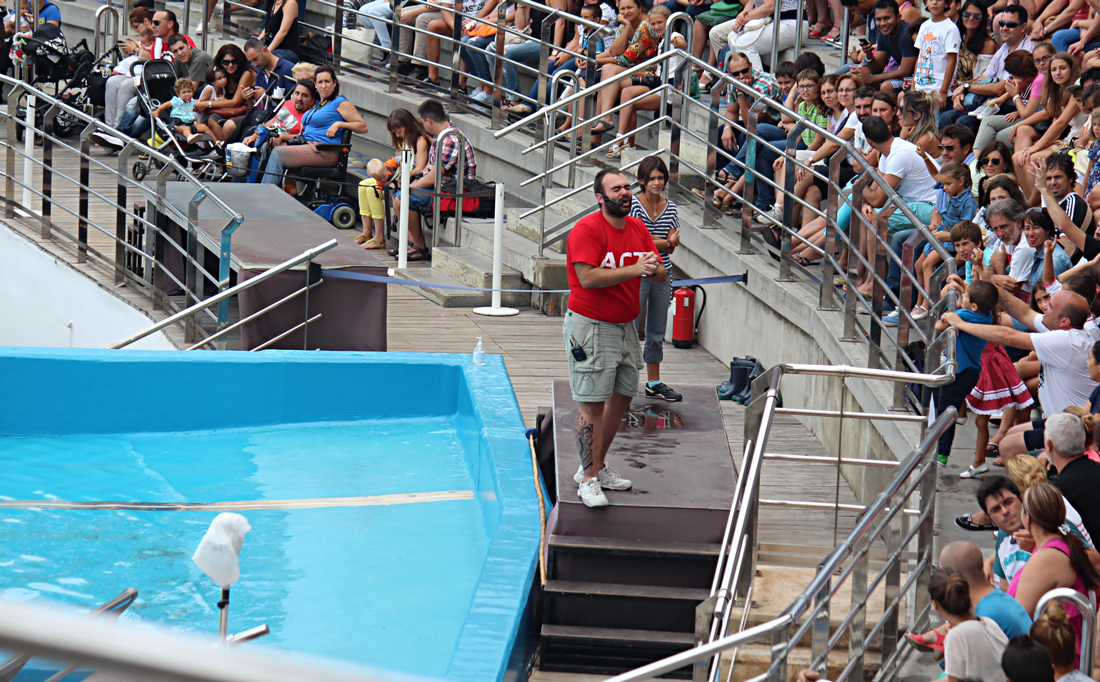 Crowd and host during the dolphin show - Oceanographic, Valencia, Spain
