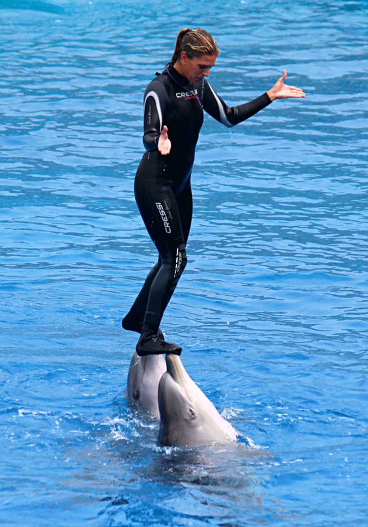 A female trainer stands and is carried by 2 dolphins - Oceanographic, Valencia, Spain