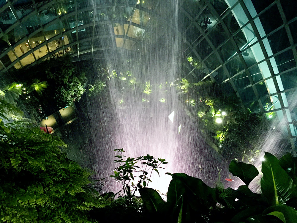 Gazing down through the 35-metre indoor waterfall inside the Cloud Forest dome at Gardens by the Bay in Singapore