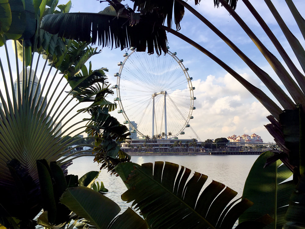 A view of the Singapore Flyer from across Marina Bay, Singapore.