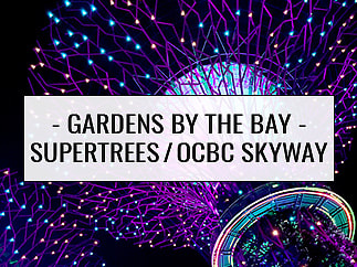 Most Popular - Travel: Gardens by the Bay Supertrees & OCBC Skyway, Singapore City