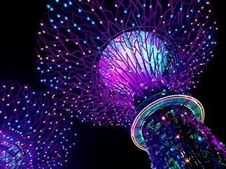 Singapore - Gardens by The Bay - Supertree Grove and the OCBC Skyway.